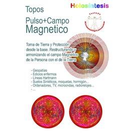 Topos para los zapatos Pulso magnético & Campo magnético