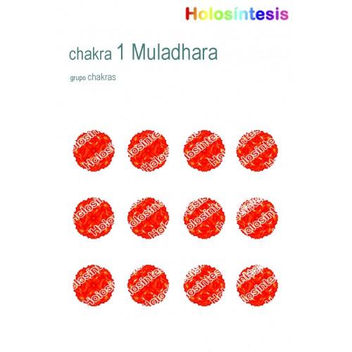 Holopuntos Chakra 1 Muladhara