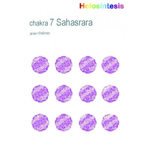 Holopuntos Chakra 7 Sahasrara