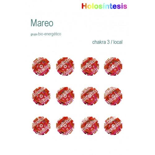 Holopuntos Mareos 01