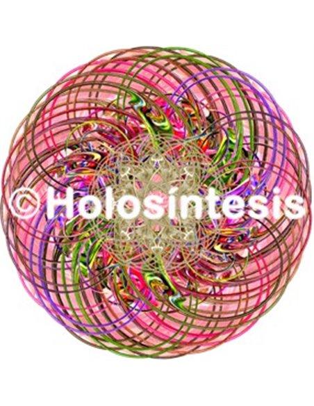 Holopuntos MC-Cerebro GF Yam ST5M