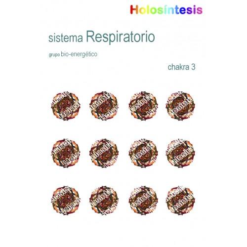 Holopuntos Sistema respiratorio