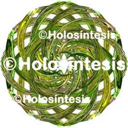 Medallones de resina HTA (hipertensión)