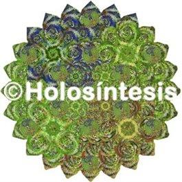 Medallones de resina Laxante 01